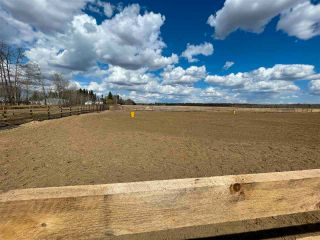 Photo 22: Twp 604 Rg Rd 244: Rural Westlock County Rural Land/Vacant Lot for sale : MLS®# E4223747