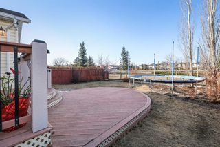 Photo 31: 143 Chapman Circle SE in Calgary: Chaparral Detached for sale : MLS®# A1091660