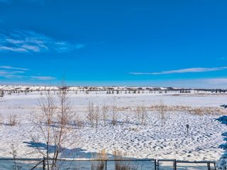 Photo 17: 42 Chaparral Valley Grove SE in Calgary: Chaparral Detached for sale : MLS®# A1066716