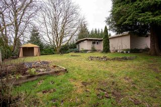 Photo 19: 21053 47 Avenue in Langley: Brookswood Langley House for sale : MLS®# R2625588