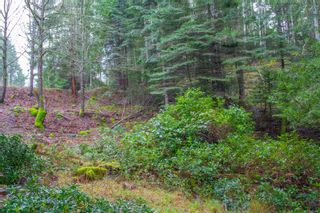 Photo 13: 2604 Yardarm Rd in : GI Pender Island Land for sale (Gulf Islands)  : MLS®# 863927