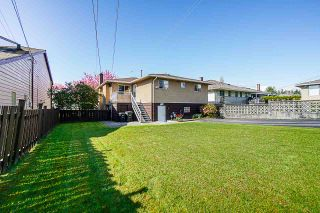 Photo 19: 4708 WESTLAWN Drive in Burnaby: Brentwood Park House for sale (Burnaby North)  : MLS®# R2361886