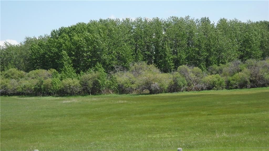 Main Photo: NONE-80 Street & 226 Ave-Rural Foothills County-