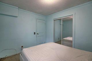 Photo 25: 1209 53B Street SE in Calgary: Penbrooke Meadows Row/Townhouse for sale : MLS®# A1042695