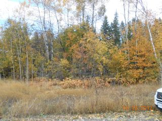 Photo 1: 3 2481 Squilax Anglemont Road in Lee Creek: Land Only for sale : MLS®# 10055686