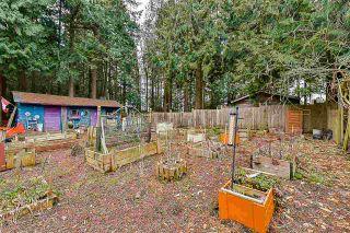 Photo 14: 12768 60 Avenue in Surrey: Panorama Ridge House for sale : MLS®# R2149274