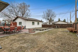 Photo 22: 8304 43 Avenue NW in Calgary: Bowness Detached for sale : MLS®# A1093020