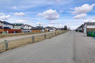 Photo 48: 87 Taravista Street NE in Calgary: Taradale Detached for sale : MLS®# A1084185