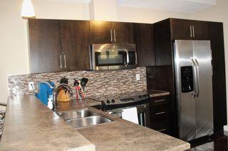Photo 5: 303 10808 71 Avenue in Edmonton: Zone 15 Condo for sale : MLS®# E4247910