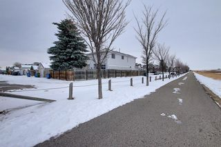 Photo 44: 47 Appleburn Close SE in Calgary: Applewood Park Detached for sale : MLS®# A1049300