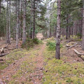 Photo 20: Vacant Land Highway 331 in West Lahave: 405-Lunenburg County Vacant Land for sale (South Shore)  : MLS®# 202111160