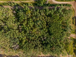 Photo 2: Lot 3 Range Road 33 in Rural Rocky View County: Rural Rocky View MD Land for sale : MLS®# A1134549