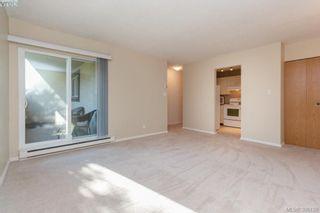 Photo 5: 106 3258 Alder St in VICTORIA: SE Quadra Condo for sale (Saanich East)  : MLS®# 775931