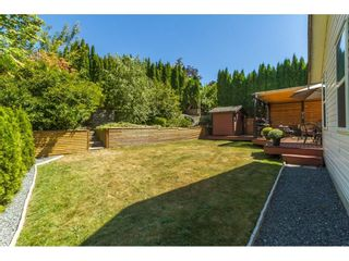 Photo 20: 3794 LATIMER Street in Abbotsford: Abbotsford East House for sale : MLS®# R2101817
