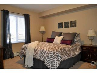 Photo 14: 6404 304 MACKENZIE Way SW: Airdrie Condo for sale : MLS®# C3590307