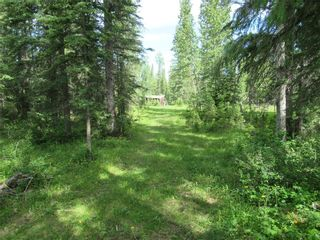 Photo 15: 70041 Highway 591: Rural Clearwater County Detached for sale : MLS®# C4305359