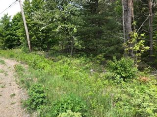 Photo 4: Lot Morganville Road in Morganville: 401-Digby County Vacant Land for sale (Annapolis Valley)  : MLS®# 202105239