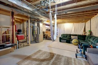 Photo 19: 10 TARALEA Bay NE in Calgary: Taradale Semi Detached for sale : MLS®# A1013270