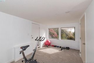 Photo 15: 4304 Houlihan Pl in VICTORIA: SE Gordon Head House for sale (Saanich East)  : MLS®# 812176