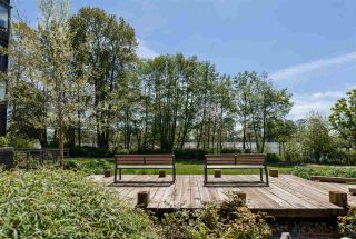 Photo 12: 101 3138 RIVERWALK Avenue in Vancouver: Champlain Heights Condo for sale (Vancouver East)  : MLS®# R2164116