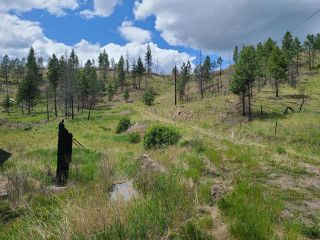 Photo 6: 1280 RENSCH ROAD: Loon Lake Lots/Acreage for sale (South West)  : MLS®# 162650