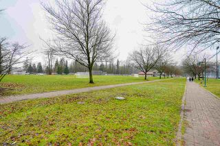 "Photo 30: 215 2343 ATKINS Avenue in Port Coquitlam: Central Pt Coquitlam Condo for sale in ""Pearl"" : MLS®# R2542020"