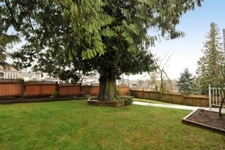 Photo 6: 18055 64TH Avenue in Surrey: Cloverdale BC House for sale (Cloverdale)  : MLS®# F1405345