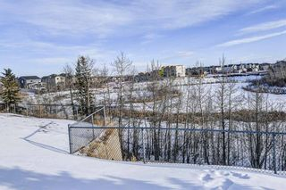 Photo 47: 36 ROYAL HIGHLAND Court NW in Calgary: Royal Oak Detached for sale : MLS®# A1029258