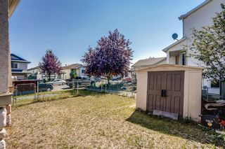 Photo 19: 87 Silver Creek Boulevard NW: Airdrie Detached for sale : MLS®# A1137823
