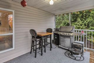 Photo 33: 12075 CARR Street in Mission: Stave Falls House for sale : MLS®# R2536142