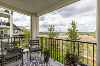 Photo 27: 4205 279 COPPERPOND Common SE in Calgary: Copperfield Apartment for sale : MLS®# C4305586