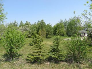 Photo 25: 106149 PTH 20 Highway East in Dauphin: Eclipse Residential for sale (R30 - Dauphin and Area)  : MLS®# 202027758