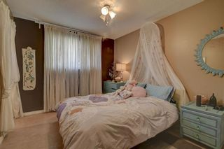 Photo 15: 11711 40 Avenue in Edmonton: Zone 16 House for sale : MLS®# E4247223