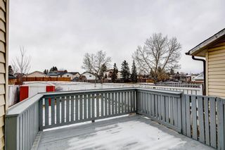 Photo 43: 64 Whitmire Road NE in Calgary: Whitehorn Detached for sale : MLS®# A1055737