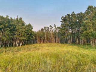 Photo 5: Lot 4 Range Road 33 in Rural Rocky View County: Rural Rocky View MD Residential Land for sale : MLS®# A1134552