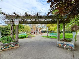 Photo 16: 311 2560 Wark St in VICTORIA: Vi Hillside Condo for sale (Victoria)  : MLS®# 811579