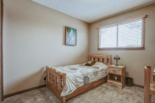 Photo 36: 87 Bermuda Close NW in Calgary: Beddington Heights Detached for sale : MLS®# A1073222