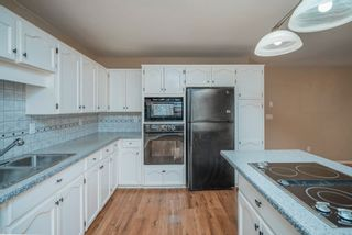 Photo 10: 19049 MITCHELL Road in Pitt Meadows: Central Meadows House for sale : MLS®# R2612171