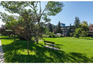 Photo 26: 112 315 24 Avenue SW in Calgary: Mission Apartment for sale : MLS®# A1145576