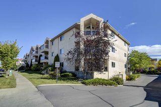 Photo 5: 103 6623 172 Street in Edmonton: Zone 20 Condo for sale : MLS®# E4224265