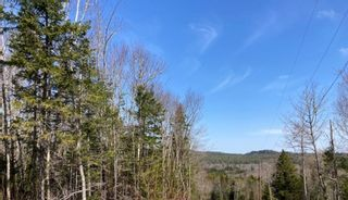 Photo 17: 65 Eaglet Lane in Musquodoboit Harbour: 35-Halifax County East Vacant Land for sale (Halifax-Dartmouth)  : MLS®# 202109854