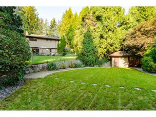 """Photo 34: 3852 196 Street in Langley: Brookswood Langley House for sale in """"Brookswood"""" : MLS®# R2506766"""