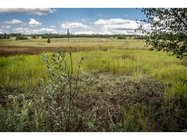 Photo 5: Photos: 1888 Marriot Road in Big Bar: Land for sale (100 Mile House (Zone 10))  : MLS®# 141373