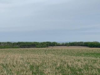 Photo 1: TOWNSHIP ROAD 574 in Rural Rocky View County: Rural Rocky View MD Land for sale : MLS®# A1091964