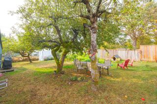 Photo 13: 2870 Austin Ave in : SW Gorge House for sale (Saanich West)  : MLS®# 856230
