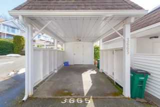 Photo 35: 3665 1507 Queensbury Ave in Saanich: SE Cedar Hill Row/Townhouse for sale (Saanich East)  : MLS®# 866565