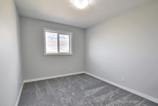 Photo 29: 77 Corner  Ridge Mews NE in Calgary: Cornerstone Detached for sale : MLS®# A1116655