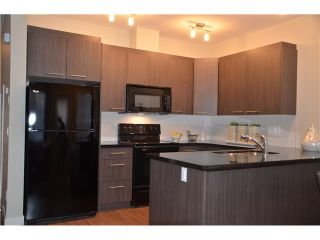 Photo 6: 128 300 MARINA Drive W in : Chestermere Townhouse for sale : MLS®# C3581362