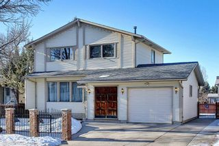 Photo 1: 3711 39 Street NE in Calgary: Whitehorn Detached for sale : MLS®# A1063183