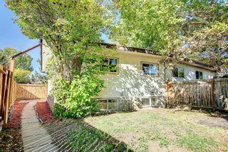 Photo 48: 3036 Doverville Crescent SE in Calgary: Dover Semi Detached for sale : MLS®# A1148570